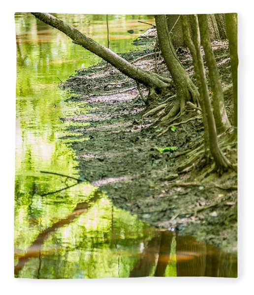 Fleece Blanket featuring the photograph cypress forest and swamp of Congaree National Park in South Caro by Alex Grichenko