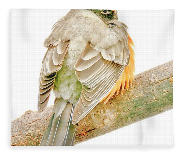 American Robin Male, Animal Portrait Fleece Blanket