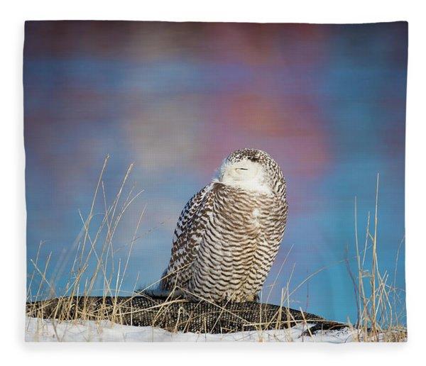 A Colorful Snowy Owl Fleece Blanket