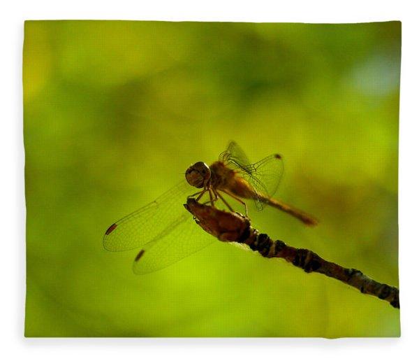 A Dragonfly Smile Fleece Blanket