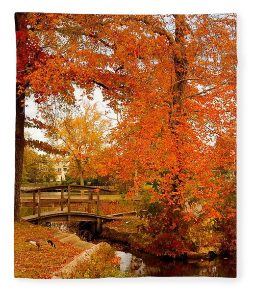 A Morning In Autumn - Lake Carasaljo Fleece Blanket