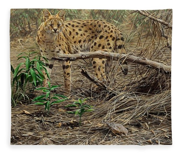 Fleece Blanket featuring the painting A Quiet Approach by Alan M Hunt