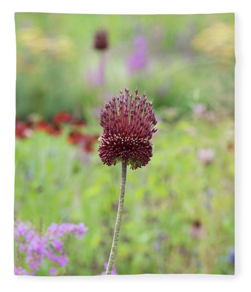 Allium Red Mohican Fleece Blanket