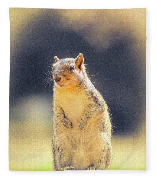 American Red Squirrel Fleece Blanket