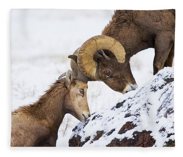 An Uphill Battle Fleece Blanket