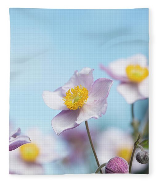 Anemone  Elegans Flowers Fleece Blanket