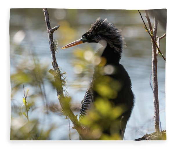 Anhinga 3 March 2018 Fleece Blanket