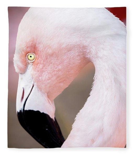 The Flamingo, Animal Decor, Nursery Decor, Flamingo Gifts, Flamingo Phone Case,  Fleece Blanket