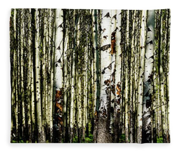 Aspens 1 Fleece Blanket