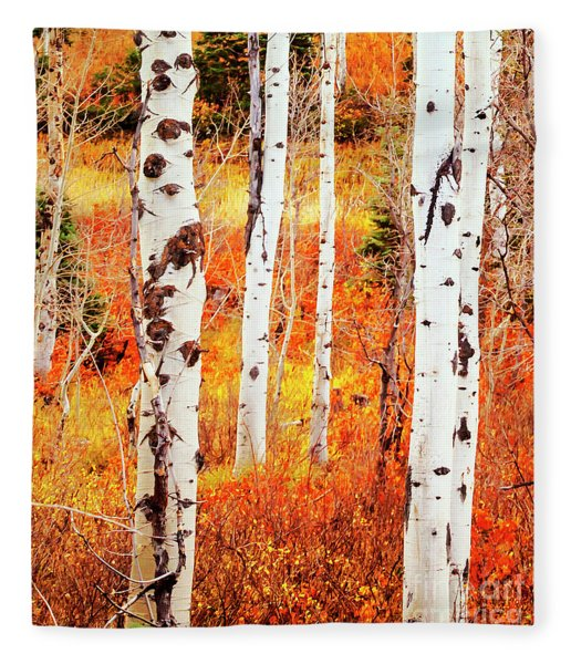 Autumn Aspens Fleece Blanket
