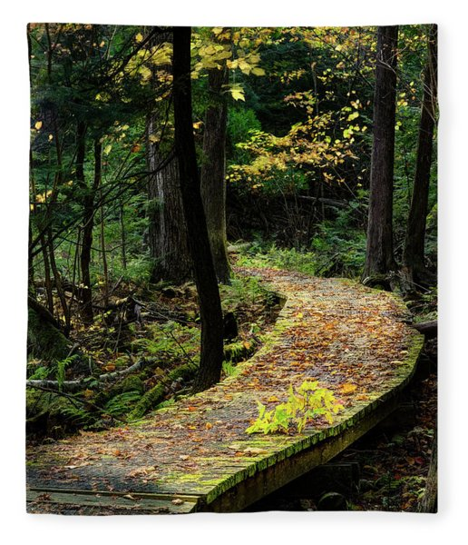 Autumn Boardwalk Fleece Blanket