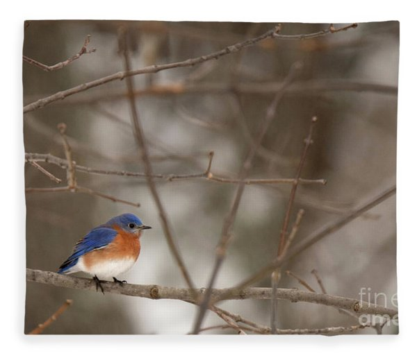 Backyard Blue Fleece Blanket