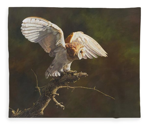 Fleece Blanket featuring the painting Barn Owl by Alan M Hunt