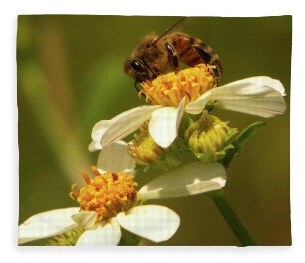 Bee Among Daisies Fleece Blanket