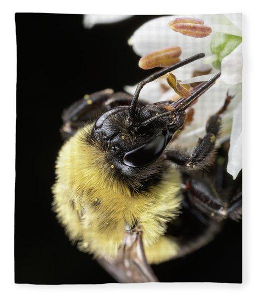 Bee Macro 1 Fleece Blanket