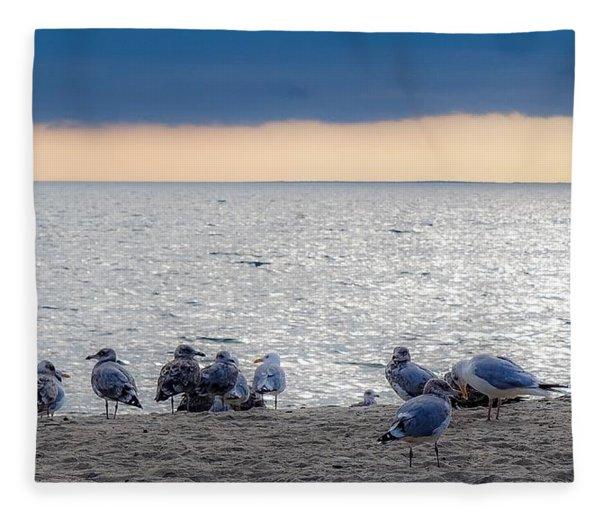 Birds On A Beach Fleece Blanket