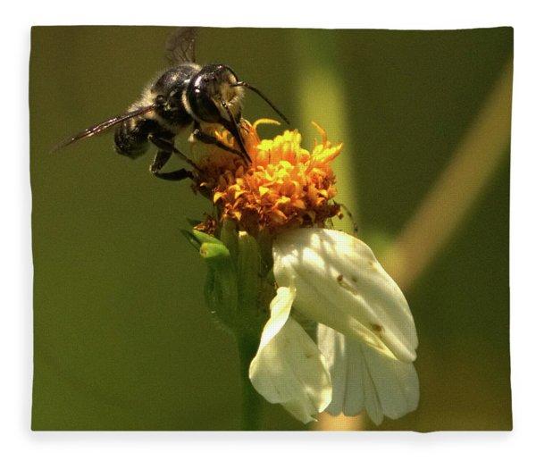 Black And Yellow Bee Pollinating Fleece Blanket