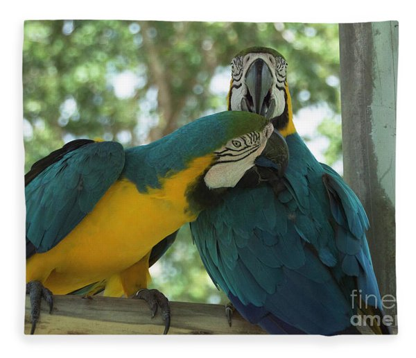 Blue And Gold Love Birds Fleece Blanket