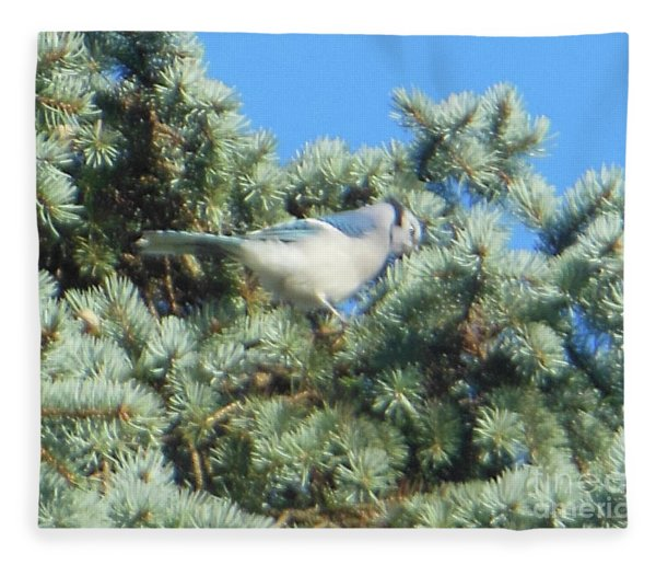 Blue Jay Colorado Spruce Fleece Blanket