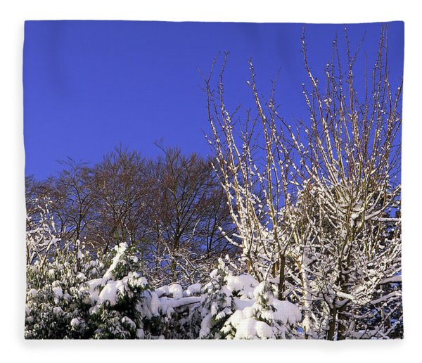 Blue Sky Fleece Blanket