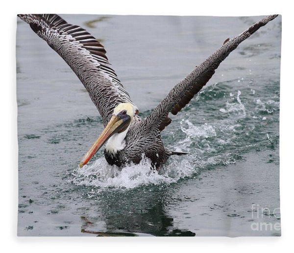 Brown Pelican Landing On Water . 7d8372 Fleece Blanket