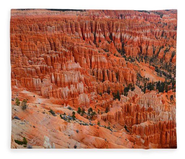 Fleece Blanket featuring the photograph Bryce Canyon Megapixels by Raymond Salani III