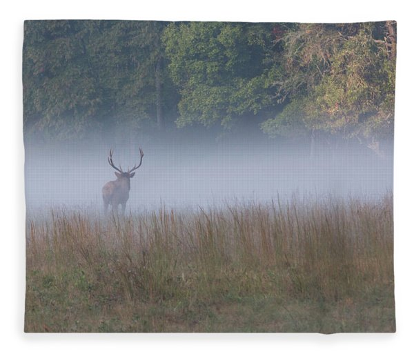 Bull Elk Disappearing In Fog - September 30 2016 Fleece Blanket