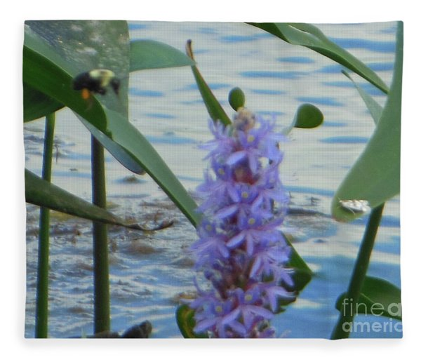 Bumblebee Pickerelweed Moth Fleece Blanket
