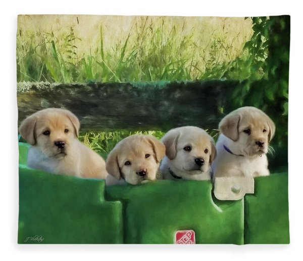 Bundles Of Joy - Labrador Art Fleece Blanket