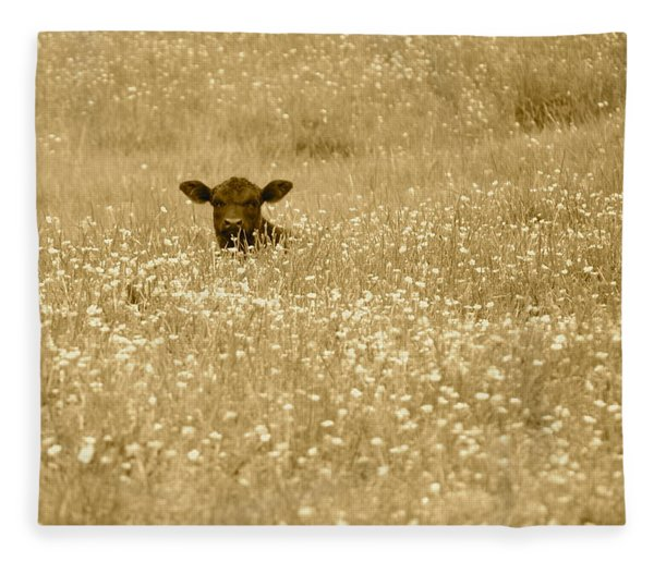 Buttercup In Sepia Fleece Blanket
