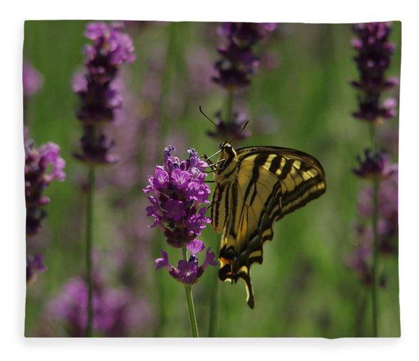 Butterfly Balancing Act Fleece Blanket