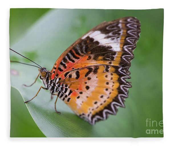 Butterfly On The Edge Of Leaf Fleece Blanket