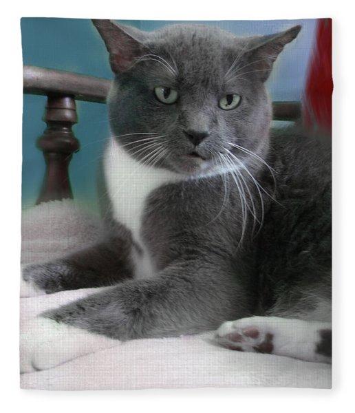 Cat Boticas Portrait  Fleece Blanket