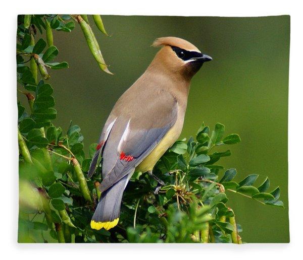 Cedar Waxwing Fleece Blanket