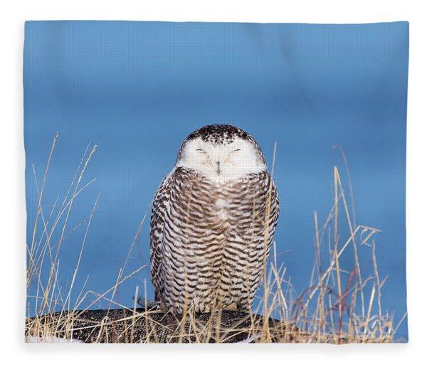 Centered Snowy Owl Fleece Blanket