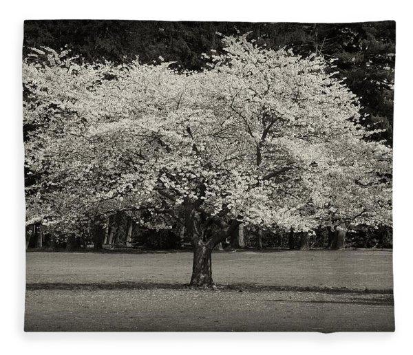 Cherry Blossom Tree - Ocean County Park Fleece Blanket