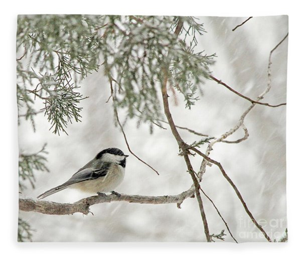 Chicadee In A Snow Storm  Fleece Blanket