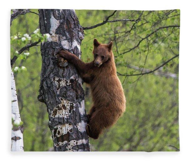 Cinnamon Climb Fleece Blanket