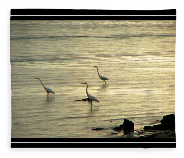 Fleece Blanket featuring the photograph Clearwater Beach by Carolyn Marshall