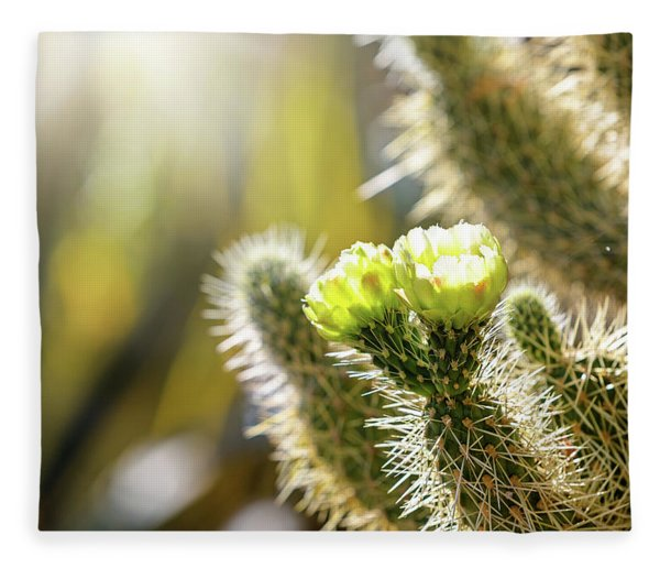 Closeup Of Blooming Cholla Cactus With Copy Space Fleece Blanket