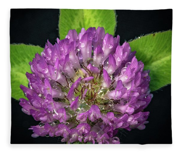 Clover Fleece Blanket