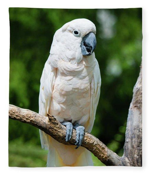 Cockatoo Fleece Blanket