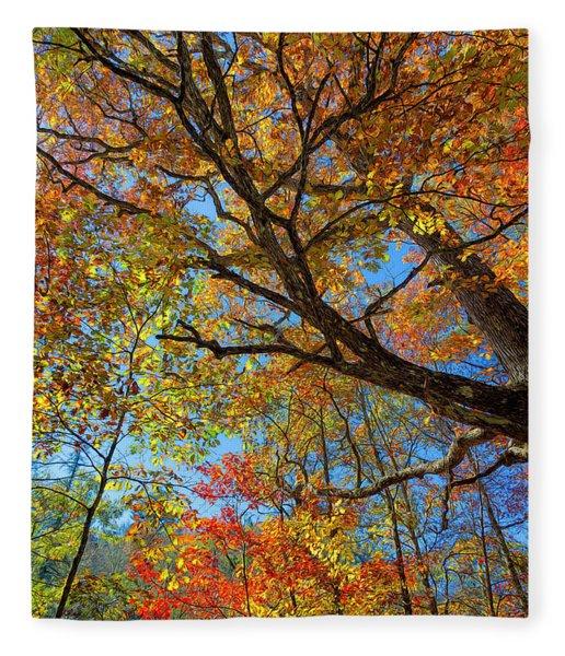 Colors On High Fleece Blanket