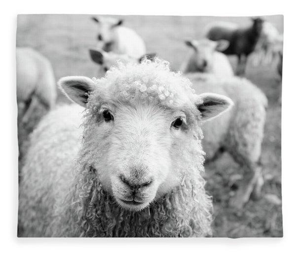 Contentment Fleece Blanket
