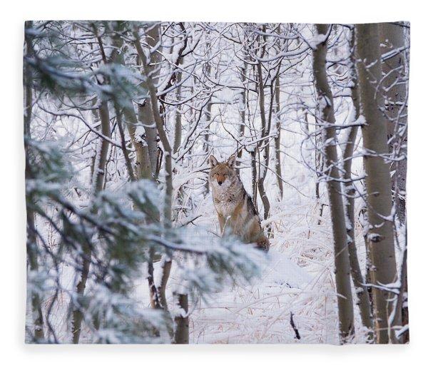 Coyote In The Aspens Fleece Blanket