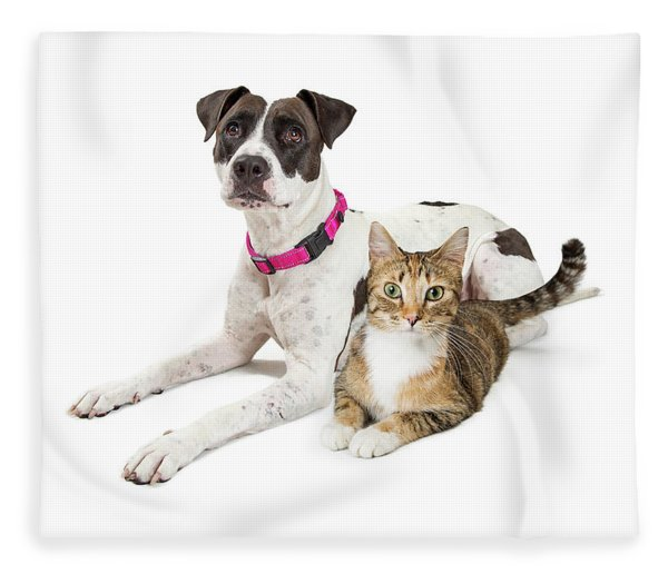Crossbreed Dog And Tabby Cat Lying Down Together Fleece Blanket