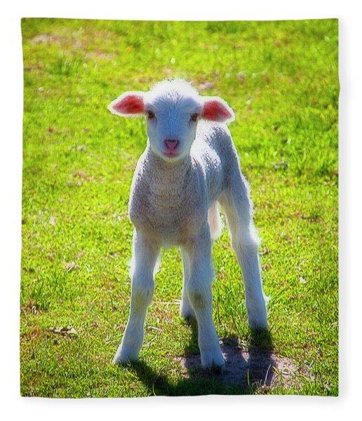 Cute Young Lamb Fleece Blanket