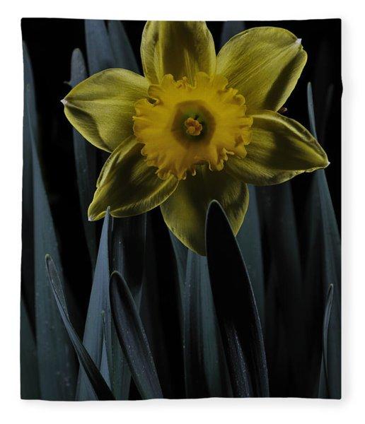 Daffodil By Moonlight Fleece Blanket