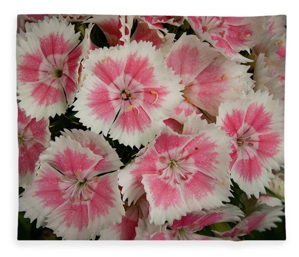 Delightful Dianthus Fleece Blanket