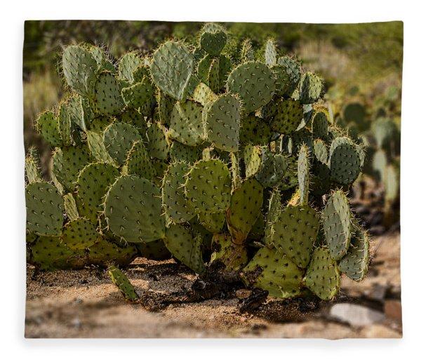 Desert Prickly-pear No6 Fleece Blanket